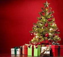 Regala i gialli di Saru a Natale